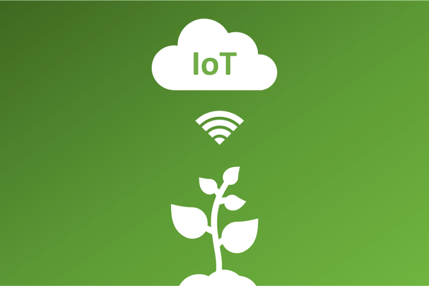 IoT smart irrigation workshop